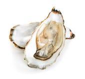 Austern lokalisiert auf einem Weiß Stockfotos