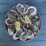Austern mit Eis und Zitronen auf Behälter lizenzfreies stockfoto