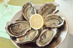 Austern mit limon auf einer Platte Lizenzfreies Stockfoto