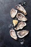 Austern und Zitrone lizenzfreies stockbild