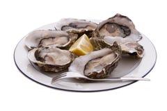 Austern, Zitrone und Gabel Lizenzfreie Stockfotografie
