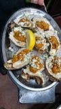 Austernteller stockfoto