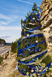 Austin cliffside Christmas tree  Stock Images