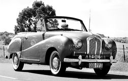 1951 Austin A30 Convertible motorcar in parade Kalbar Country Day Stock Photos