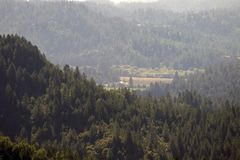 Austin Creek State Recreation Area - parkera att omringa ett vildmarkområde Dess inkluderar ravin, gräs- backar, ek-CA royaltyfri bild