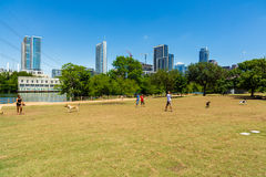 Austin dog park. Austin, TX USA - April 14: Popular dog park along Auditorium Shores with the downtown skyline in the background royalty free stock image