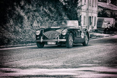 AUSTIN HEALEY 100/4 1956 Royaltyfria Bilder
