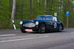 1958 Austin Healey 100 BN4 at the ADAC Wurttemberg Historic Rallye 2013 Royalty Free Stock Images