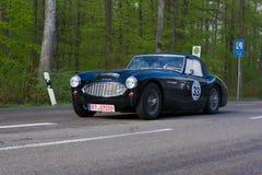 Austin Healey 1958 100 BN4 på ADACEN Wurttemberg historiska Rallye 2013 Royaltyfria Bilder