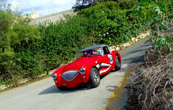 Vintage Car 1954 Austin Healey 100 BN1 in Race Action Stock Photo
