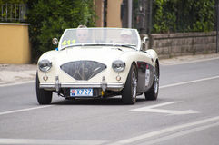 Austin Healey100 M BN21956 Stock Images