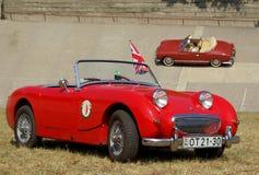 Austin Healey Mk1 Frogeye Sprite Royalty Free Stock Image