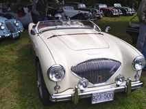 Austin Healy. At the victoria B.C. British classic car show Royalty Free Stock Images
