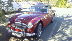 Austin Healy. Old car in the shade stock photos