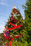 Austin roadside Christmas tree Royalty Free Stock Photography