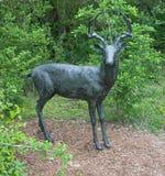 AUSTIN TEXAS - APRIL 3, 2018 - hjortar skulpterar på slingan på L Fotografering för Bildbyråer
