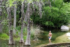 N Krause Springs park near Austin stock photos
