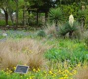 AUSTIN TEXAS - APRIL 3, 2018 - siloborggårdträdgården på knatten Arkivbild
