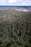 Austrália: Bushland azul das montanhas dos bancos da montagem Imagens de Stock