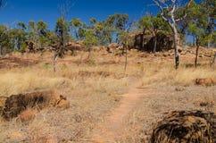 Austrália, caminhando no interior, parque nacional vulcânico de Undara Fotografia de Stock