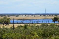 Austrália, natureza, paisagem com lago Imagem de Stock Royalty Free