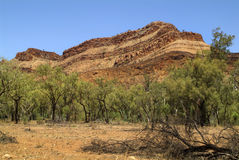 Austrália, NT, Mc do leste Donnell Range, Fotos de Stock Royalty Free