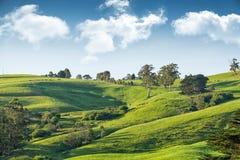 Austrália rural cênico Foto de Stock