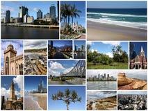 australasian Royaltyfri Fotografi
