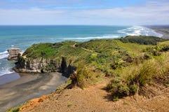 Australasian Gannet, пляж Muriwai, северный остров, Новая Зеландия Стоковая Фотография RF