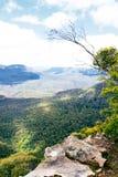 Australië. Het blauwe Nationale Park van Bergen Royalty-vrije Stock Fotografie