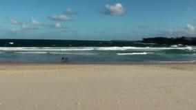 Australië, Nieuw Zuid-Wales, Sydney, Bondi-Strandmening stock video
