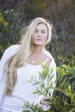 Australiër met Lang Blond Haar wat betreft Boom Stock Fotografie