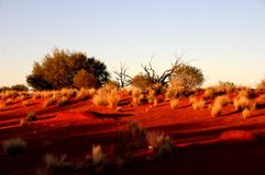 Australia Stock Photography