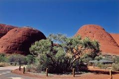 Australia. Olgas Royalty Free Stock Photo