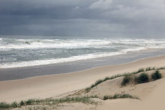 Australia - beach of Tasman Sea Royalty Free Stock Photo