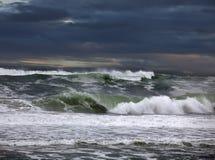 Australia - beach of Tasman Sea Royalty Free Stock Image