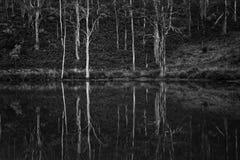 Australia, Black-and-white, Cold royalty free stock photos