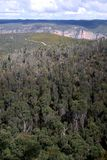 Australia: Blue Mountains bushland from Mount Banks stock images
