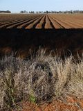 Australia: cotton field irrigation ditches Royalty Free Stock Photos