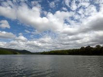 Australia, Daintree National Park. Daintree river, Boat trip on the river royalty free stock photography