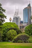Australia Day Picnic in Royal Botanical Garden in Sydney. Royal Botanical Garden, Sydney, Australia -January 26, 2018: Australia Day is picnic day even when the Royalty Free Stock Photography