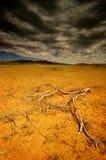 Australia del sud Immagini Stock