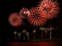 Australia dnia fajerwerki obrazy stock