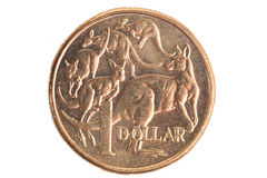 Australia Dollar coin. Close up of a used Australian dollar coin Royalty Free Stock Photo
