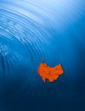 Australia Down Under Continent. The Australian continent upside down and surrounded by blue ocean Stock Photography