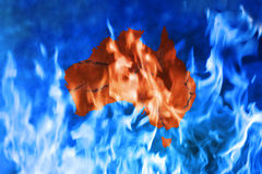 Australia Fire Global Warming. A conceptual image showing the increasing danger of Australian bush fires due to global warming. Sadly, Australia is having a very Royalty Free Stock Photo