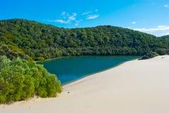 australia fraser wyspa Queensland Zdjęcia Stock