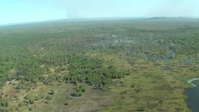 Australia,kakadu national park, flight over the natural park, top view of the river, swamps and puddles, billabong. Australia,kakadu national park, top view of stock footage
