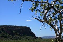 australia kakadu park narodowy Obraz Royalty Free