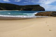 Australia: kangaroo tracks on beach h Stock Photo